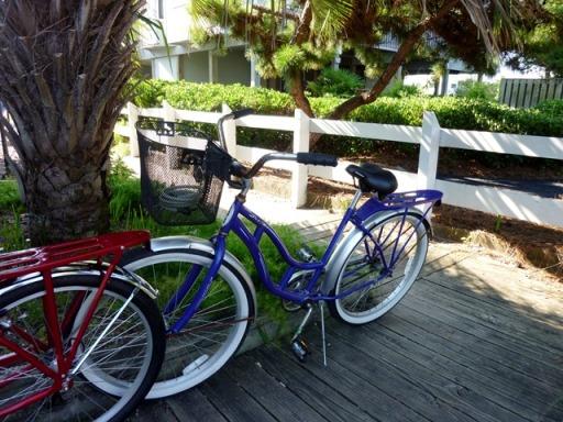 bikes wb
