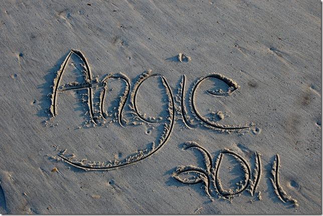 angie2011